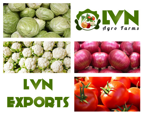 lnv-exports