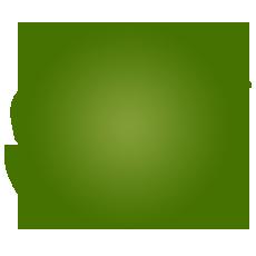 premium-fruits